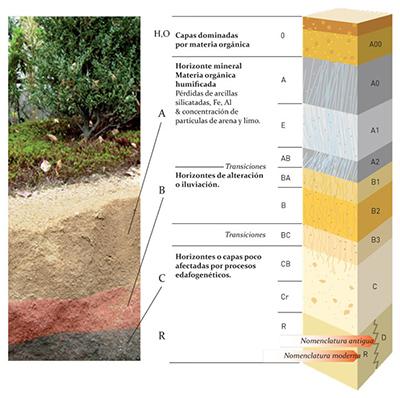 Recalces de cimentaci n arquitectura for Como esta constituido el suelo