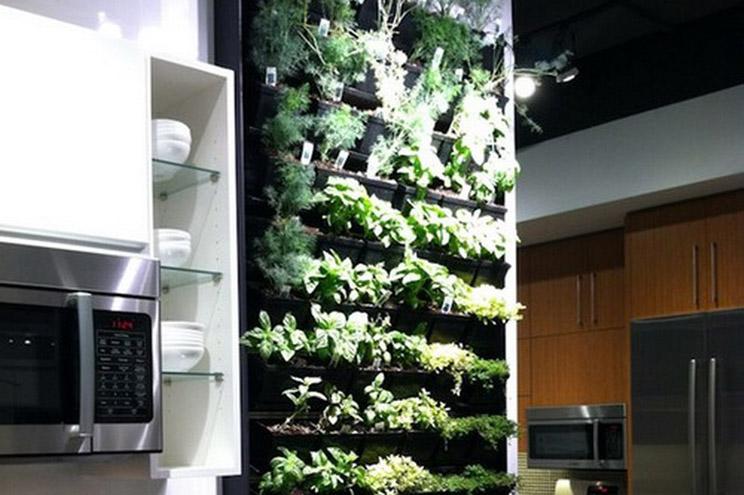 Tu propio jard n vertical en casa arquitectura for Jardin vertical en casa