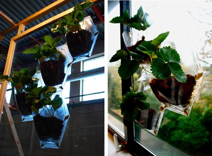 Tu propio jard n vertical en casa arquitectura for Jardin vertical materiales
