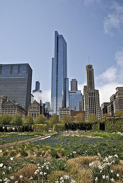 Millennium Park  Parque del milenio Chicago  Jay Pritzker Pavilion Frank Gehry  Lurie Garden