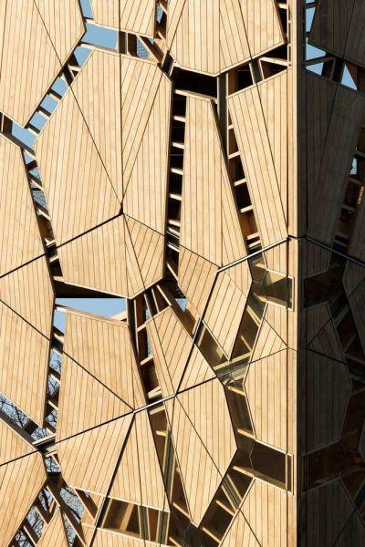 torre pompejus de accoya foto exterior detalle piel
