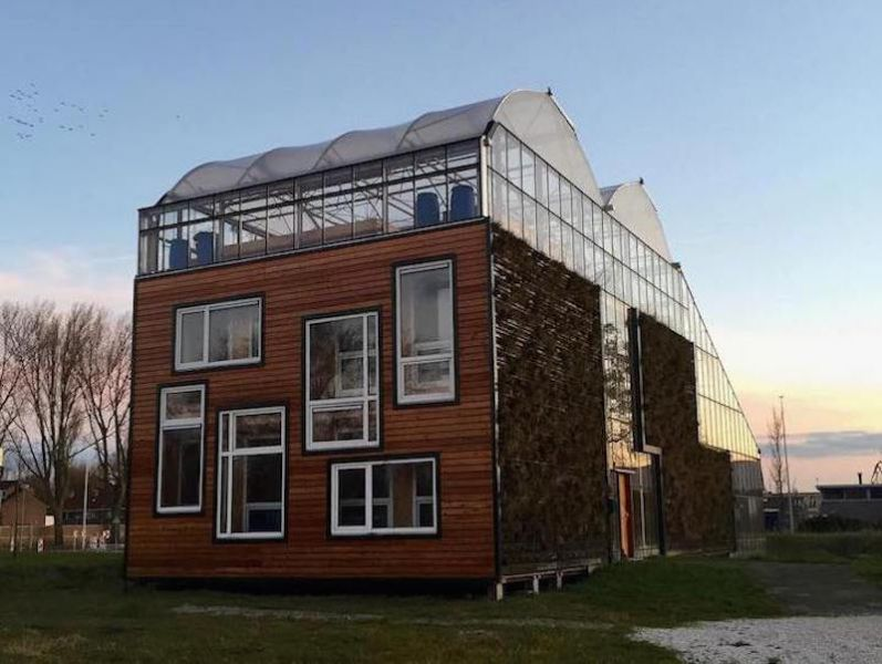 arquitectura_cubierta huerto_proyecto Rotterdam