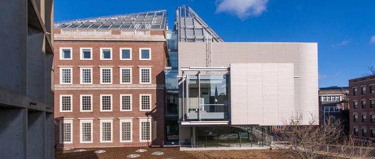 Ampliaci n del harvard art museums renzo piano arquitectura for Arquitectura harvard