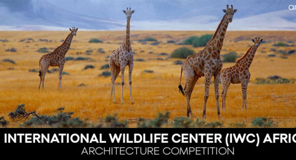 Arquideas convoca el concurso International Wildlife Center
