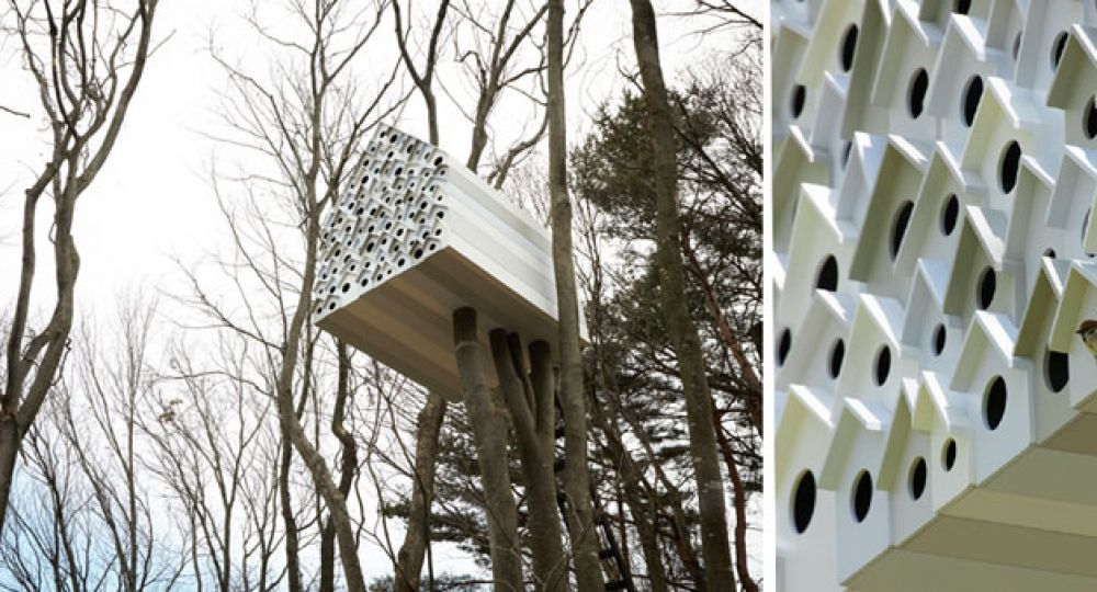 Arquitectura de altos vuelos para 78 pájaros