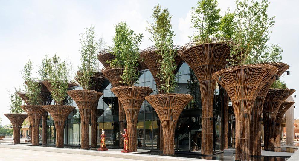 Bambú, el acero verde del Siglo XXI