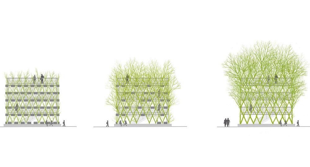 Baubotanik, arquitectura viviente