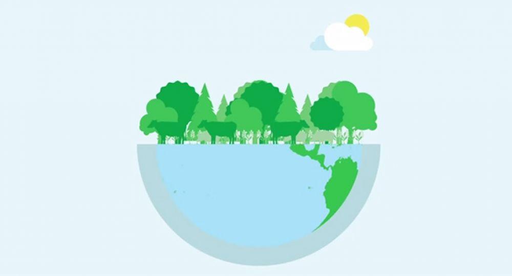 Apuesta por la biomasa. La energía de la Naturaleza