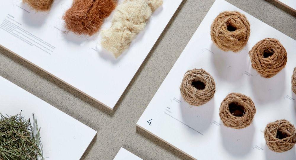 Forest Wool. Diseño ecológico y sostenible