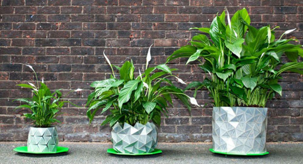 Maceta origami Growth, la maceta que crece junto a las plantas