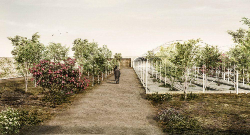 Volver a la tierra. 3º Premio del II Concurso PFC Arquitectura y Empresa