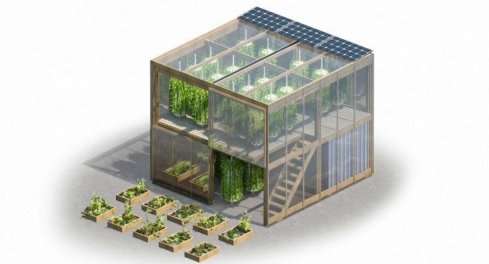 Impact Farm. Soluciones arquitectónicas para la escasez de alimentos
