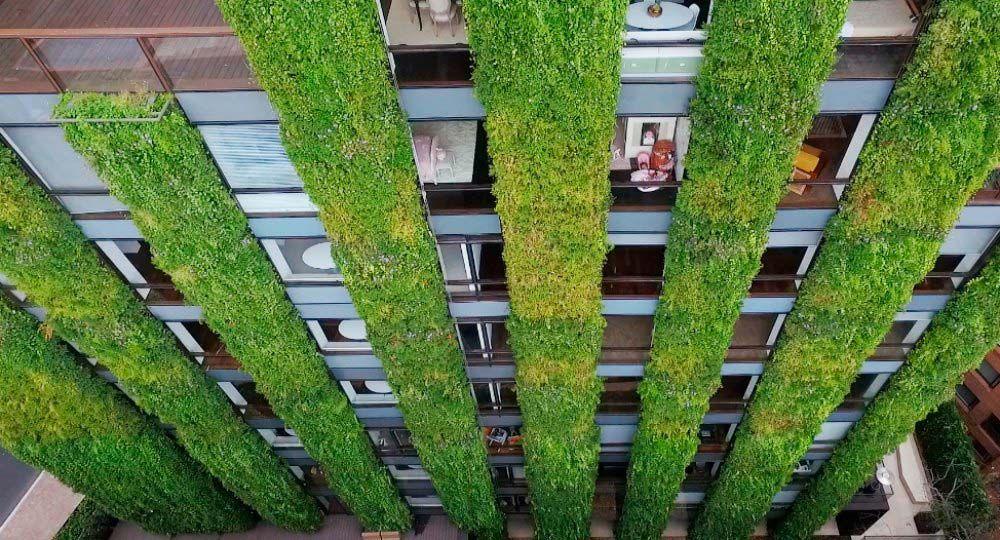 Arquitectura verde vertical. Jardín vertical del biólogo y botánico Ignacio Solano