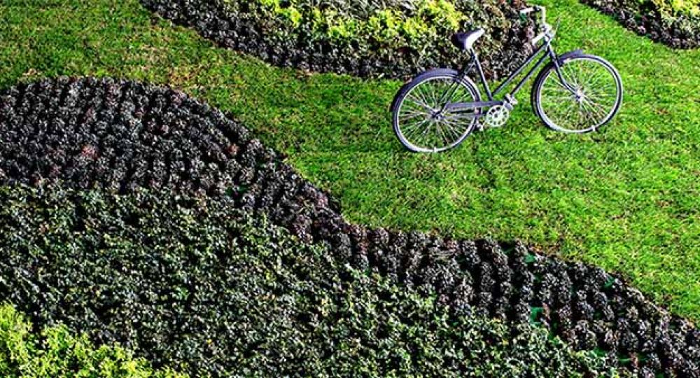 Más que muros verdes del arquitecto Fernando Ortiz Monasterio