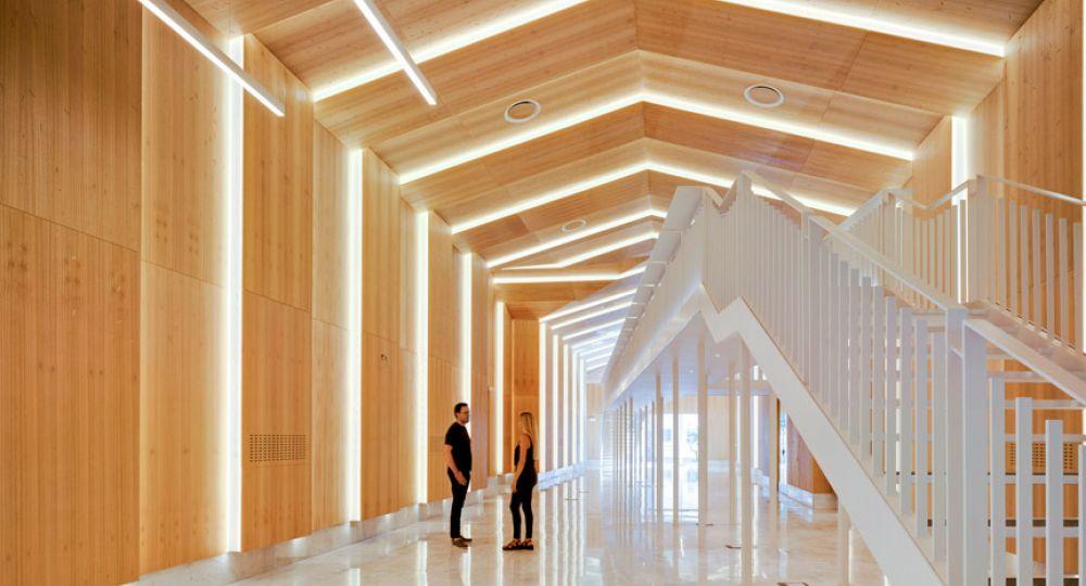 Museo de las Colecciones Naturales de la Universidad de Alicante. COR Asociados Arquitectos.