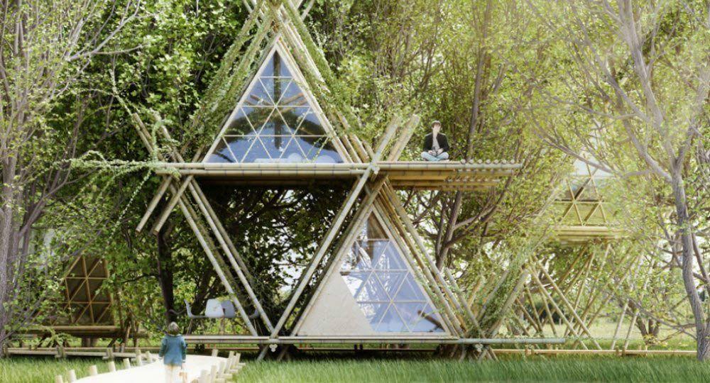 Conviviendo con los pájaros. Arquitectura efímera sostenible