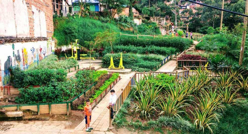 Basureros transformados en  jardines públicos: Medellín, Colombia.