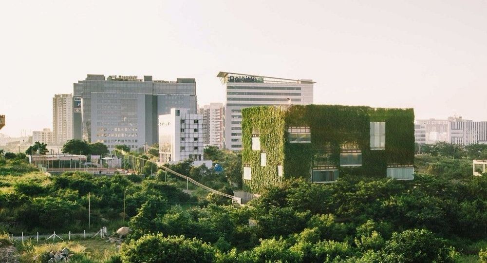 Arquitectura en verde: las fachadas vivas de Rahul Mehrotra