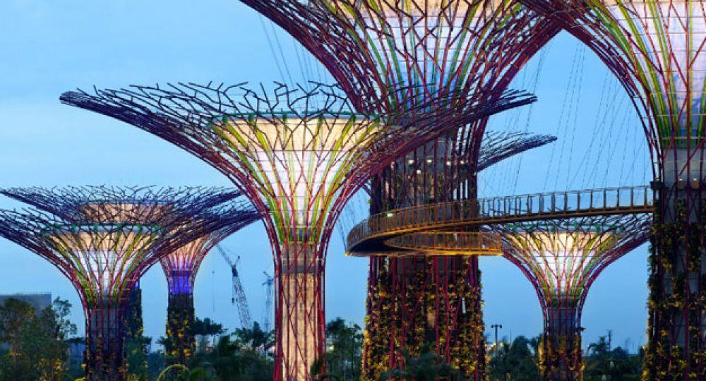 Super trees jardines verticales en singapur arquitectura for Arquitectura de jardines