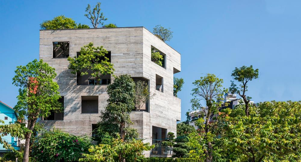 Habitar un bosque vertical