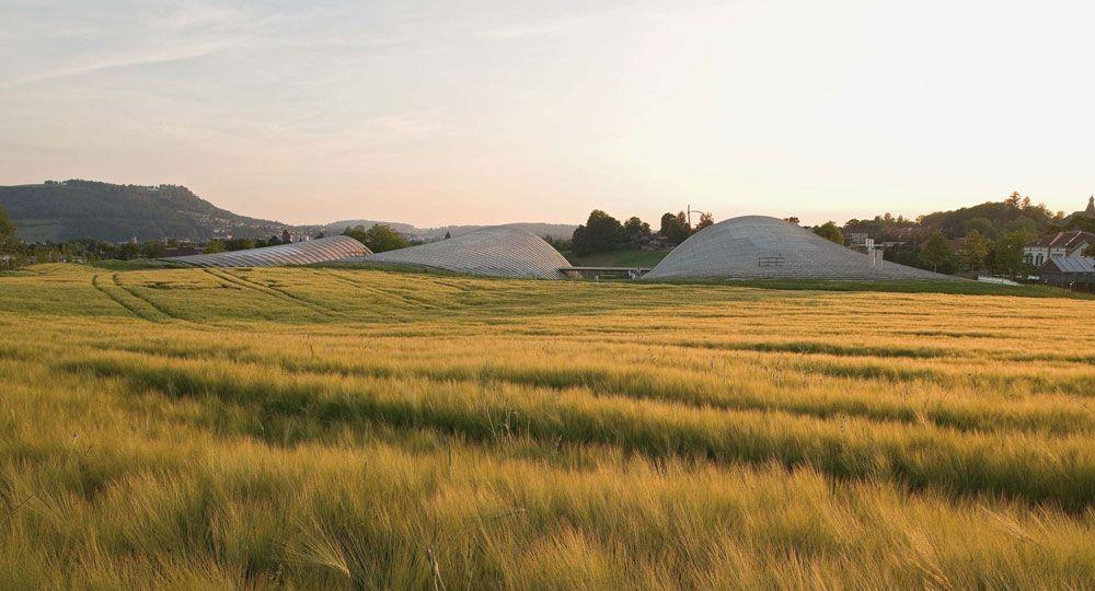 Arquitectura que dialoga con la naturaleza