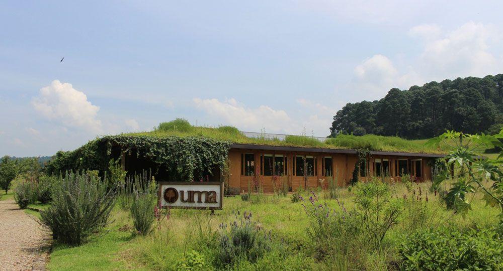 Arquitectura regenerativa. La Universidad del Medio Ambiente. Oscar Hagerman