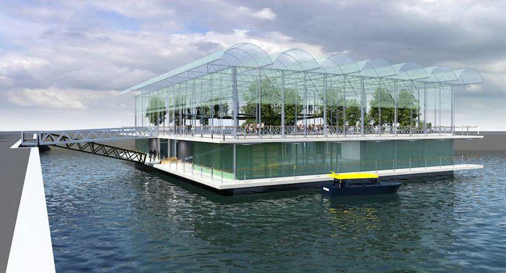 Granja flotante en Rotterdam. Diseño y construcción Beladon