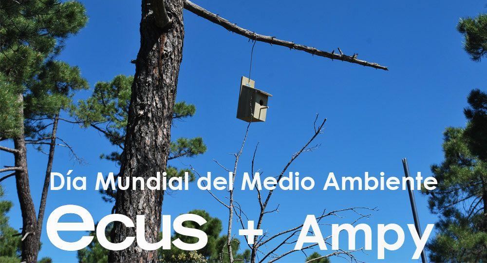 Ecus y Ampy celebran juntos el Día Mundial del Medio Ambiente