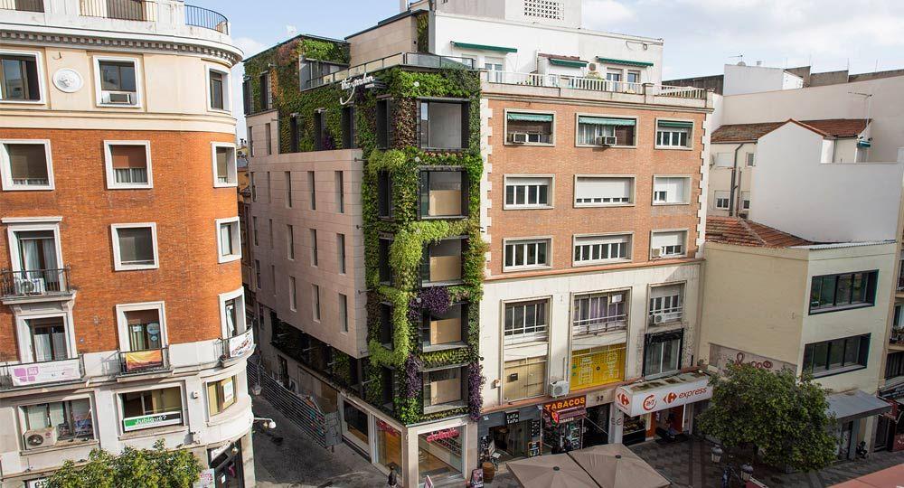 Arquitectura vegetal del biólogo Ignacio Solano. La Calle Montera luce un nuevo jardín vertical