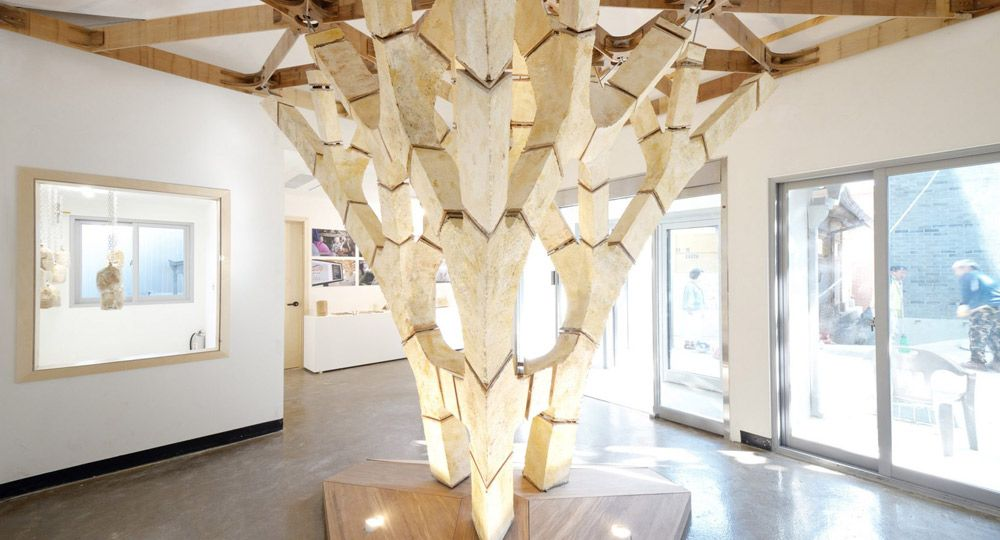 Estructuras portantes con hongos. Arquitectura 100% biodegradable