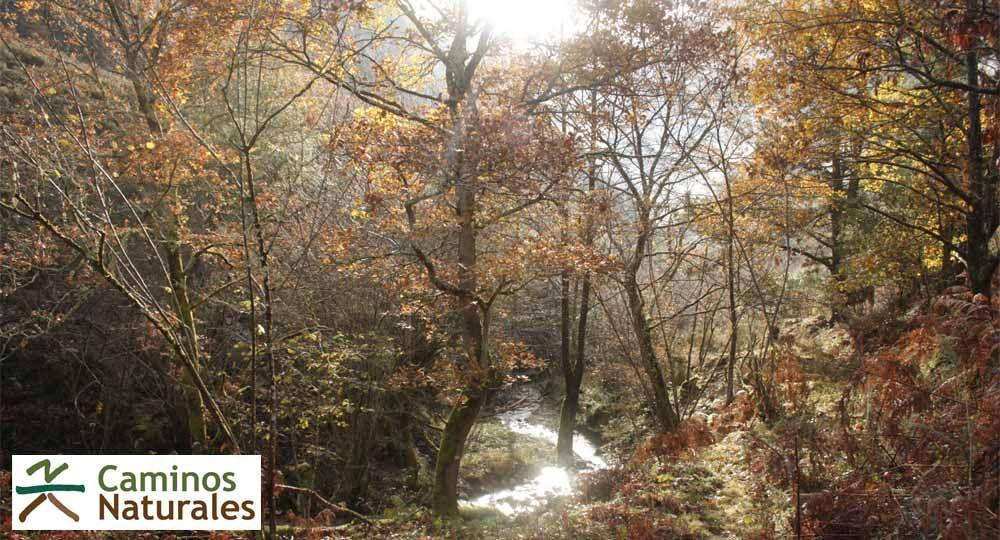 Caminos Naturales de España.