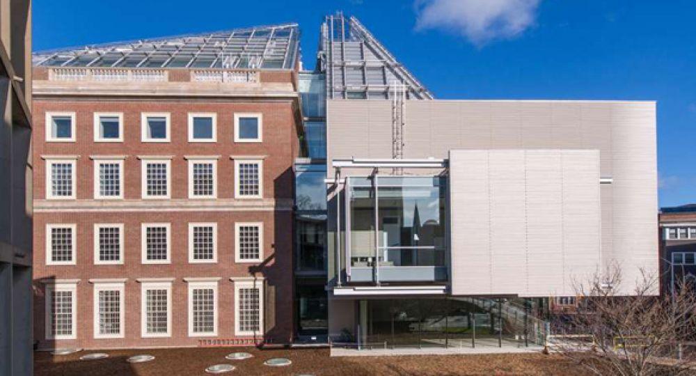 Ampliación del Harvard Art Museums, Renzo Piano