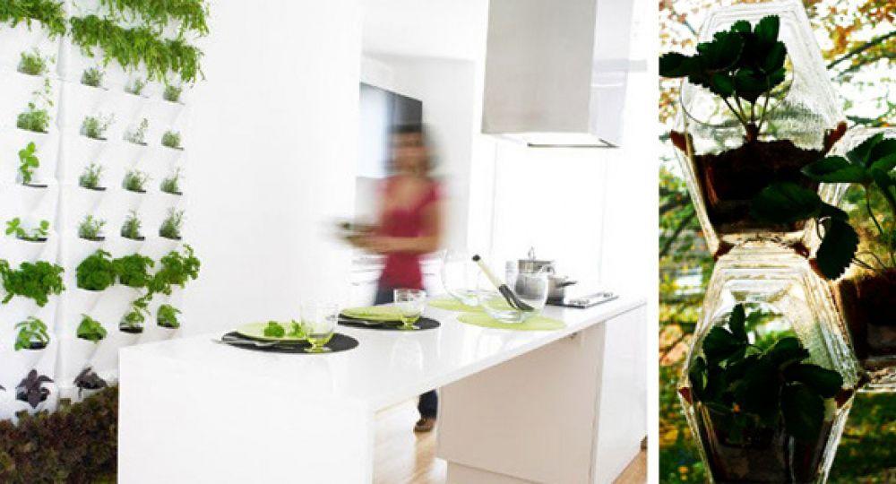 Tu propio jard n vertical en casa arquitectura for Cocinas para jardin
