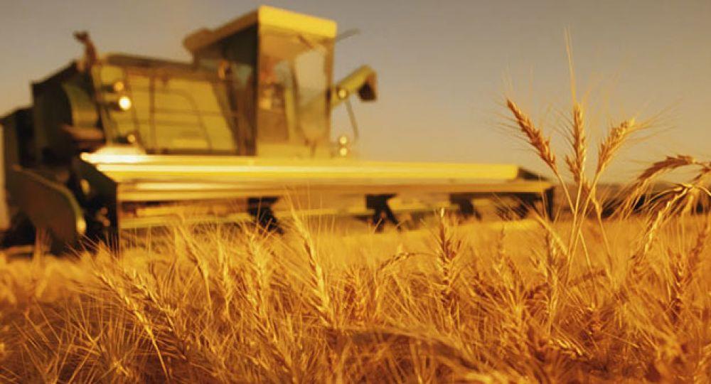 ¿Cómo conseguir un desarrollo rural sostenible?