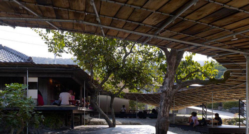 Arte y Gastronomía bajo la sombra de un árbol, Shima Kitchen