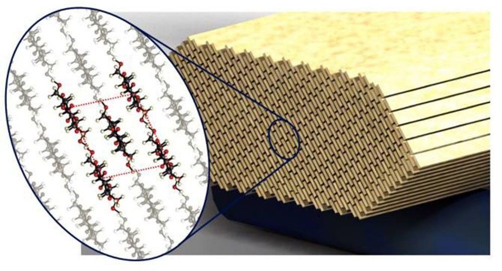 Tecnología de la Arquitectura: Hormigón con Nanocristales de celulosa.