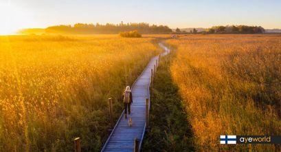 Lammassaari: Un paseo en mitad de la naturaleza