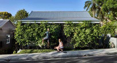 Vegetación protagonista de la arquitectura residencial unifamiliar: Terrarium House