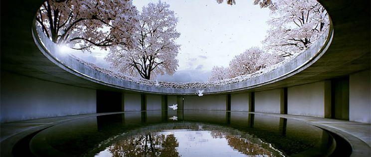 The Third & The Seventh, Un corto de arquitectura m�s que fotoreal�stico