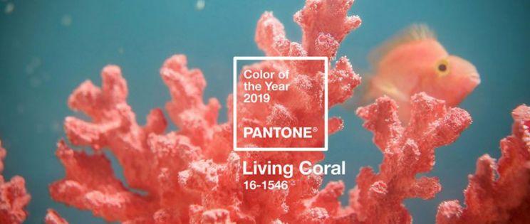 El año 2019 llega de color Living Coral. Pantone anuncia el nuevo color del año
