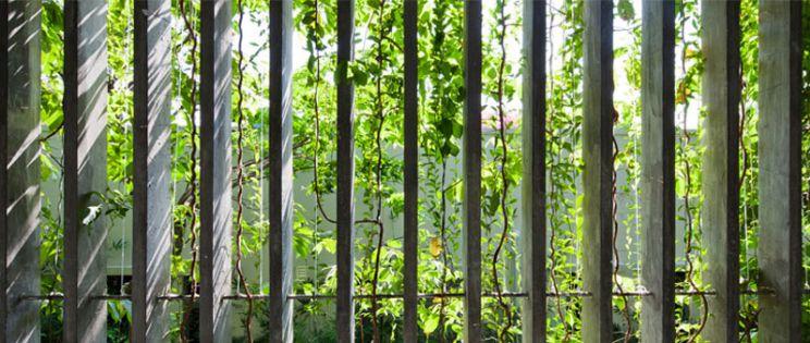 Vo Trong Nghia revisita los Jardines de Babilonia
