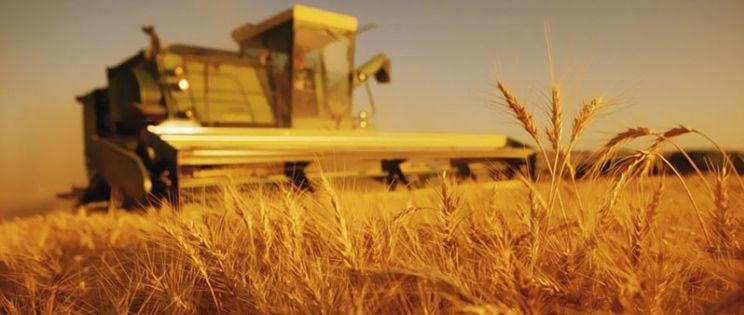 �C�mo conseguir un desarrollo rural sostenible?
