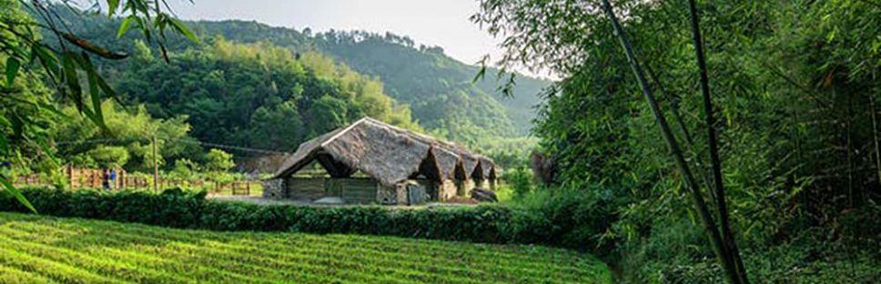 Eco-granjas de bambú. Arquitectura sostenible en la Comuna del Sol, Hangzhou.