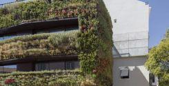 Un jardín vertical en las paredes