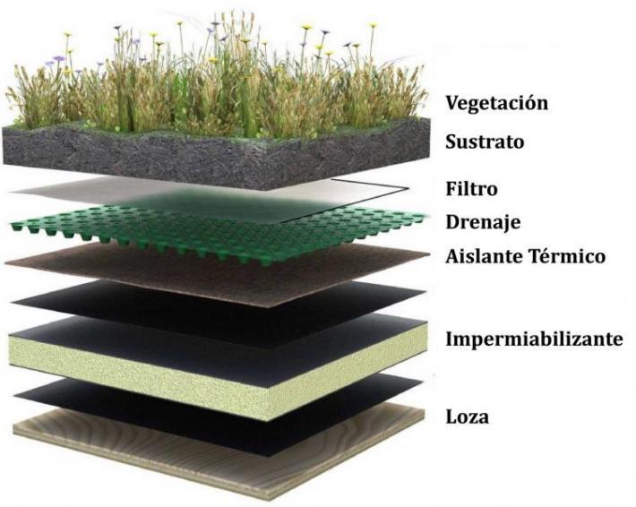 composición techo verde