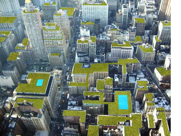 Edificios techos verdes